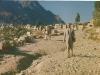 taiz-yemen_1967